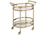 Lakelyn Gold Serving Cart