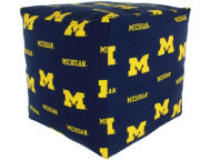 Wolverines Cube Cushion