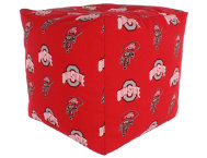 Ohio State Cube Cushion