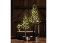 shop 7' Norway Pine In/Out LED Tree
