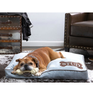 Stud Pet Bed