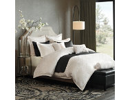 8pc Pathways Queen Comforter