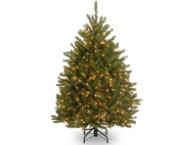 Fir Tree 4FT, Clear
