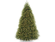 Fir Tree 9FT, Clear