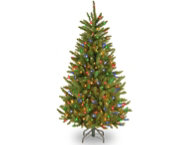 Fraser Slim Fir 4.5FT, Multi