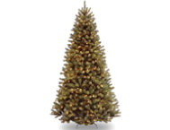 Valley Spruce 7.5FT, Clear
