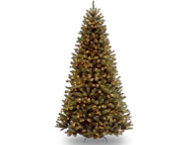 Valley Spruce 9FT, Clear