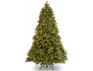 Douglas Fir 7.5FT, Dual LED