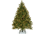 Douglas Fir 4.5FT, Dual LED