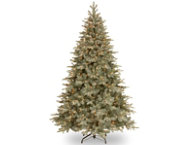 shop Arctic Spruce 7.5FT, Clear
