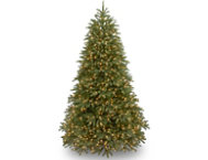 Jersey Fir 6.5FT, Clear