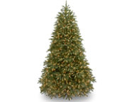 Jersey Fir  6.5FT, LED