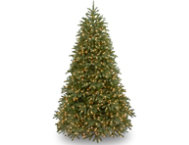 Jersey Fir  7.5FT, Dual LED