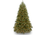 Jersey Fir  7.5FT, LED