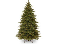 shop Noble Blue Spruce 7.5FT, Clear
