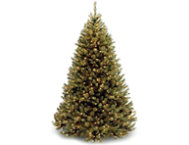 shop Rocky Pine 7.5FT, Clear
