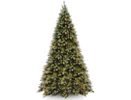 Tiffany Fir 12FT, Clear