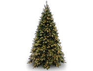 Tiffany Fir 9FT, Clear