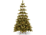 shop Woodland Pine 7.5FT, Clear