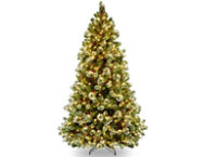 shop Wintry Pine 6.5FT, Clear