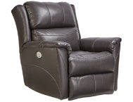 shop Platinum-Dual-Power-Recliner