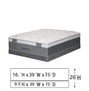 Twin Mattress Set