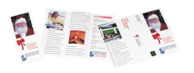 Holiday Newsletter or Brochure