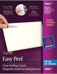 NG EZ Peel LBL INKJET CLR 1-3/4X1/2