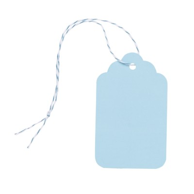 "MSHO Paper Tags, Blue, Large, 2-3/4""x1-11/16"", 6/pk 11863"