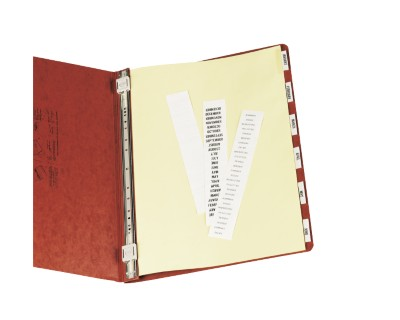Data Binder Tab Dividers 11724