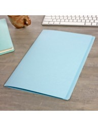 Light Blue Manilla File