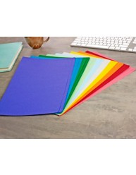Assorted Colour Manilla File Foolscap 20 Pack
