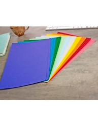 Assorted Colour Manilla File Foolscap 10 Pack