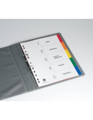 Multi-coloured Polypropylene Dividers