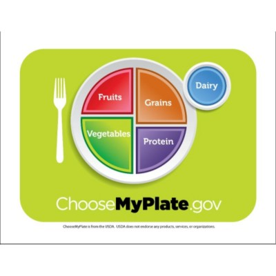 Choose My Plate Magnet Sheet, 1 per page
