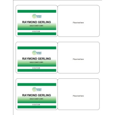 Meeting Name Badge, Green Border, 3 per sheet
