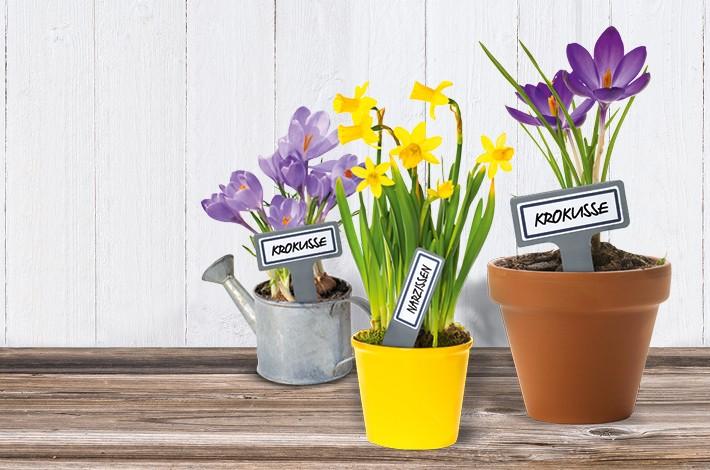 Schöne Gärten lieben unsere LIVING Etiketten.