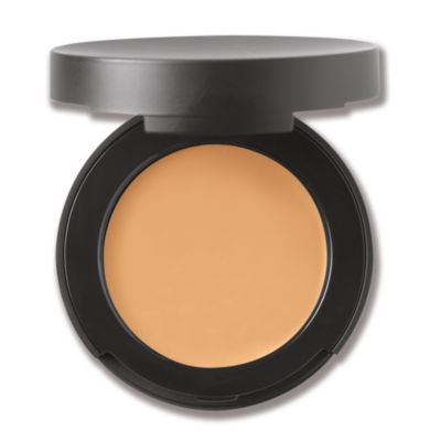 Correcting Concealer Broad Spectrum SPF 20 - Medium 2
