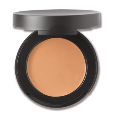 Correcting Concealer Broad Spectrum SPF 20 - Tan 2