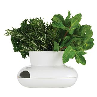 Herb Pot>                    - Design Within Reach