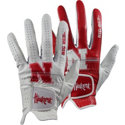 Glove Branders Collegiate Series Golf Gloves