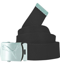 Women's Spectrum Web Belt