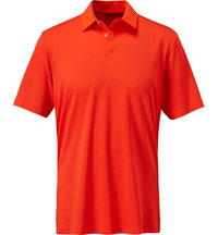 Men's Mesh Color Hit Short Sleeve Polo
