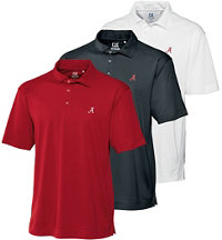 Men's Collegiate DryTec Polo