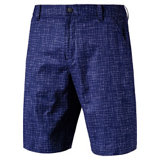 Men's PWRCOOL Mesh Plaid Shorts