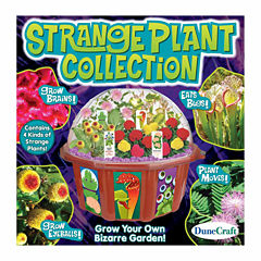 Dunecraft Dome Terrarium - Strange Plant Collection