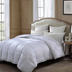Queen Street White Down Medium Pillow