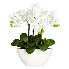 Nearly Natural Phalaenopsis Silk Flower Arrangement