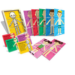 4m My Body Systems Discovery Toy