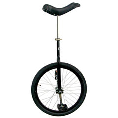 Fun Bike Matte Black 20 Unicycle With Alloy